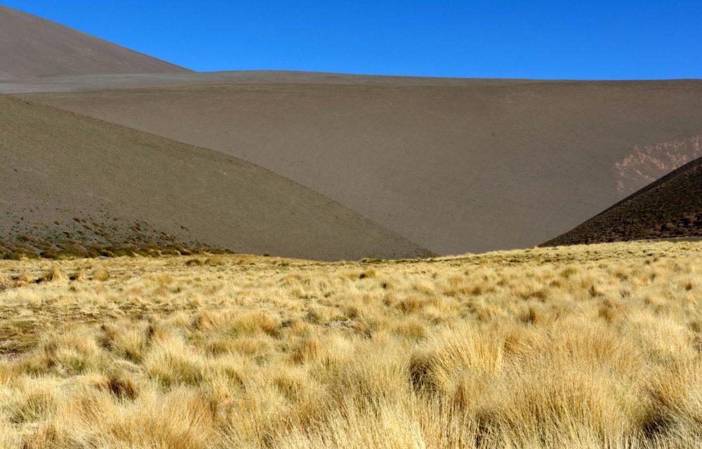 La Puna, Province de Catamarca, Argentine