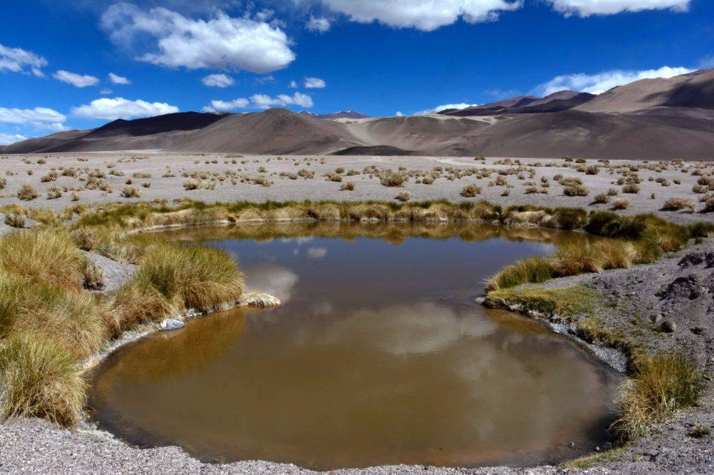 Ojos del Campo, Salar d'Antofalla, Province de Catamarca, Argentine