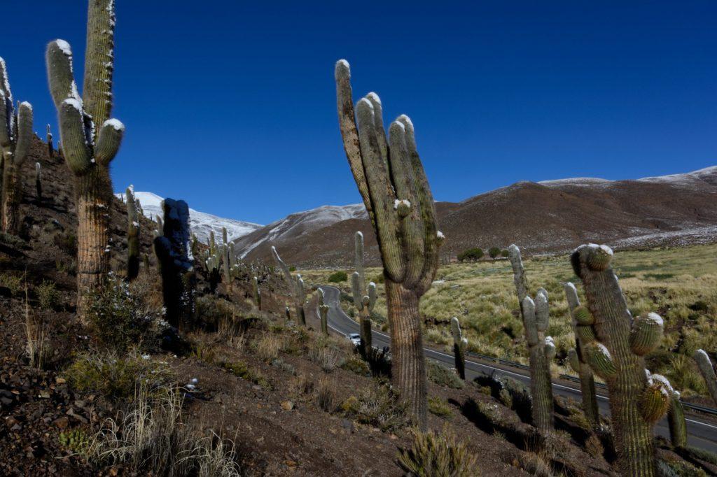 RP51 vers Salta, Province de Salta, Argentine